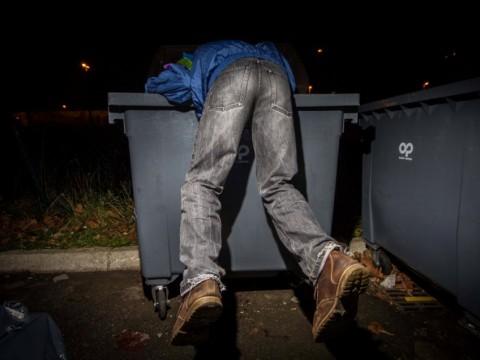 Rien d'anormal, un Gars'Pilleurs dans une poubelle...