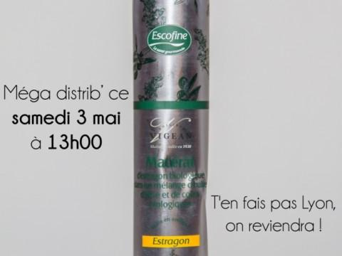 Distrib huile d'estragon2