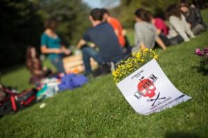 Pique nique dans l'herbe au Parc de la Tête d'Or un 2 novembre...